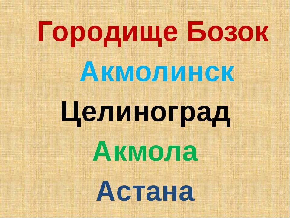 Городище Бозок Акмолинск Целиноград Акмола Астана