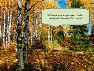 Здравствуйте! Рад видеть Вас в лесу моем! Но грибы достанутся Вашему классу,