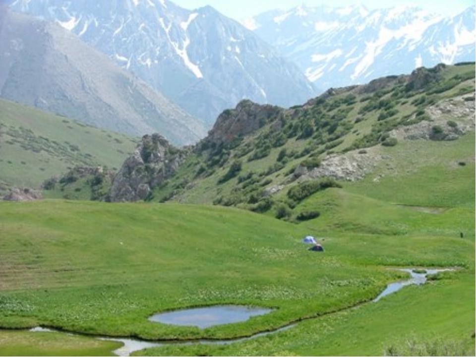 Рисунок природа казахстана
