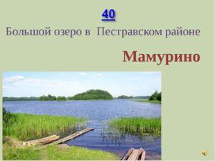 Большой озеро в Пестравском районе Мамурино