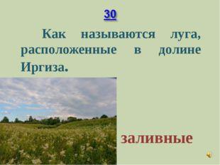 Как называются луга, расположенные в долине Иргиза. заливные