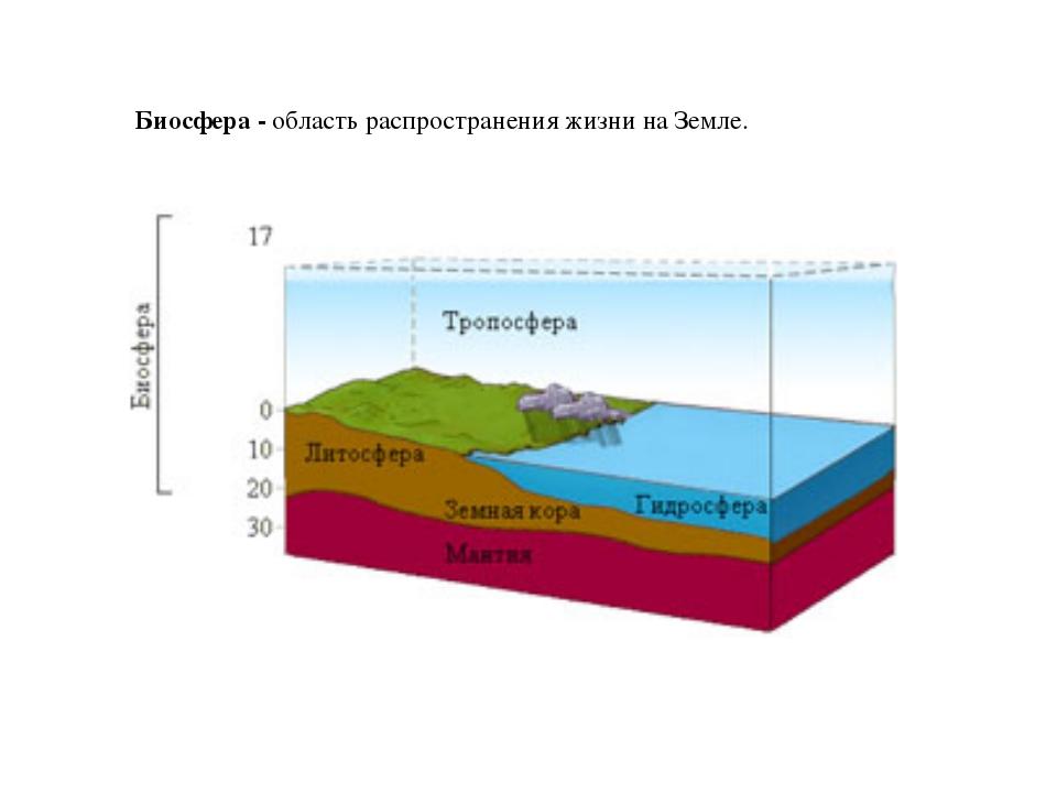 Биосфера - область распространения жизни на Земле.
