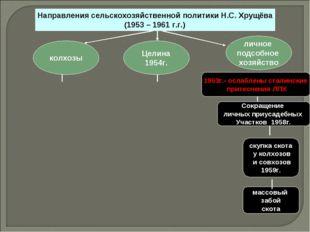 Направления сельскохозяйственной политики Н.С. Хрущёва (1959 – 1961 г.г.) лич