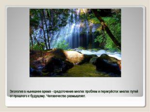 Экология в нынешнее время - средоточение многих проблем и перекрёсток многих