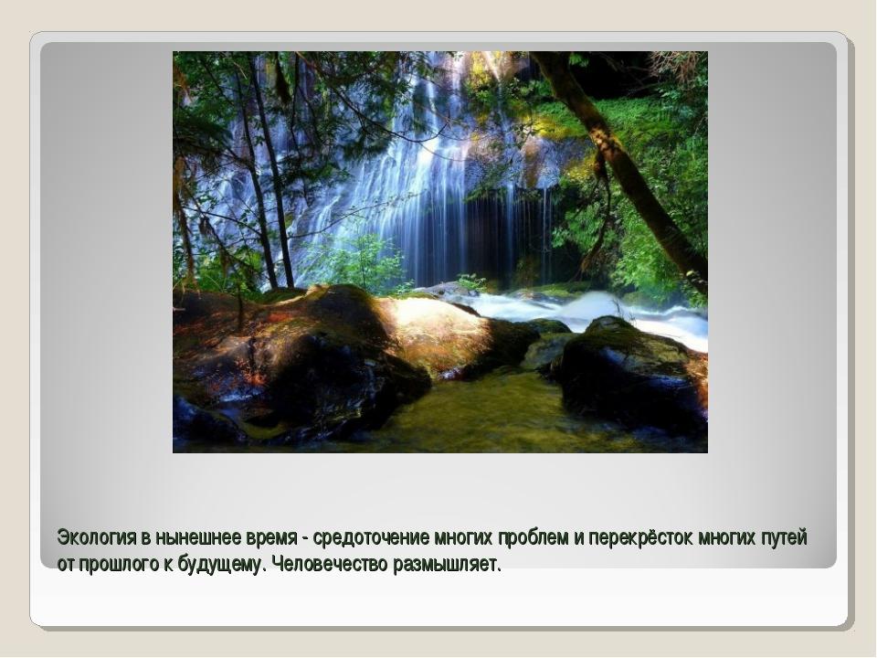 Экология в нынешнее время - средоточение многих проблем и перекрёсток многих...