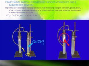 Практическая работа «Определение наличия углекислого газа в выдыхаемом возду