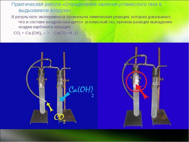 Практическая работа «Определение наличия углекислого газа в выдыхаемом возду...