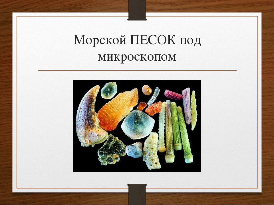 Морской ПЕСОК под микроскопом