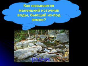 Как называется маленький источник воды, бьющий из-под земли? родник