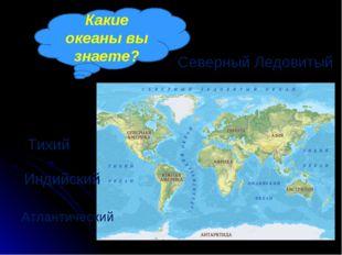 Какие океаны вы знаете? Тихий Атлантический Индийский Северный Ледовитый