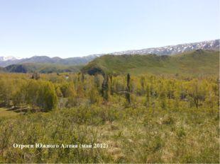 Отроги Южного Алтая (май 2012)