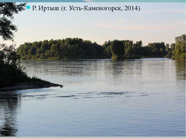 Р. Иртыш (г. Усть-Каменогорск, 2014)