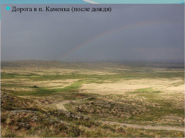 Дорога в п. Каменка (после дождя)