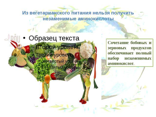 Из вегетарианского питания нельзя получить незаменимые аминокислоты Сочетание...
