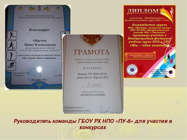 Руководитель команды ГБОУ РХ НПО «ПУ-8» для участия в конкурсах