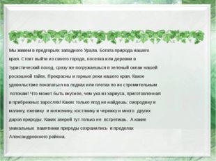 Мы живем в предгорьях западного Урала. Богата природа нашего края. Стоит вый