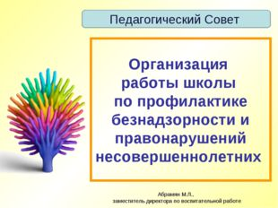 Абрамян М.Л., заместитель директора по воспитательной работе Организация рабо