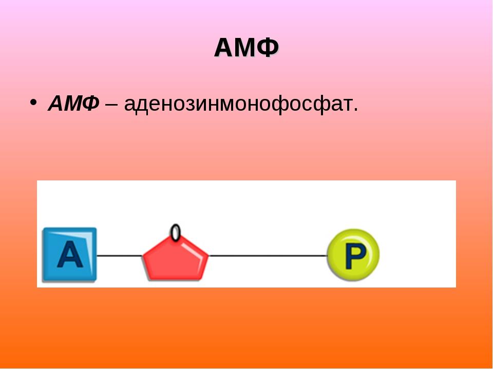 АМФ АМФ – аденозинмонофосфат.