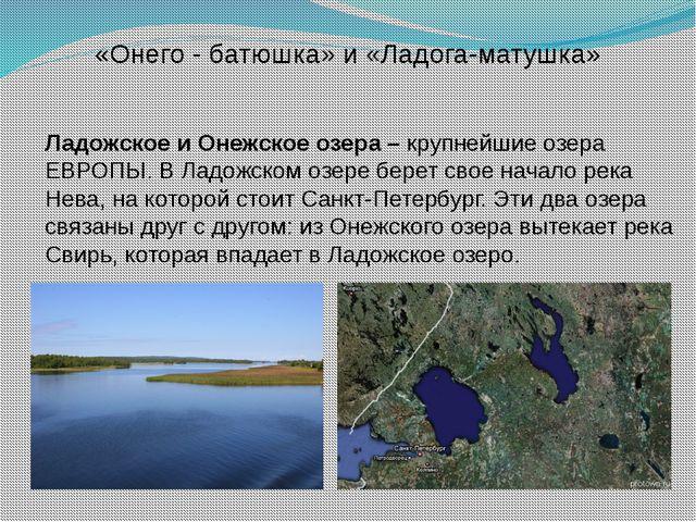 Ладожское и Онежское озера – крупнейшие озера ЕВРОПЫ. В Ладожском озере бере...