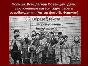 Польша. Концлагерь Освенцим. Дети, заключенные лагеря, ждут своего освобожден