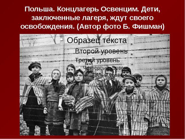 Польша. Концлагерь Освенцим. Дети, заключенные лагеря, ждут своего освобожден...