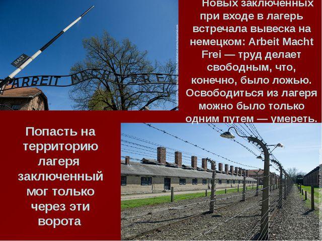 Новых заключенных при входе в лагерь встречала вывеска на немецком: Arbeit M...