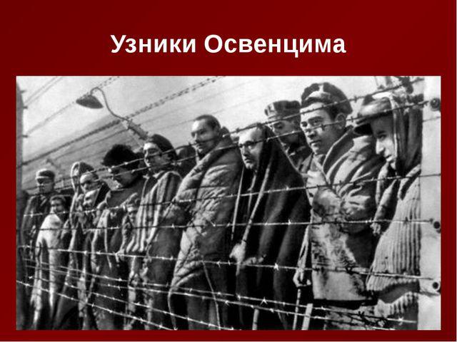 Узники Освенцима