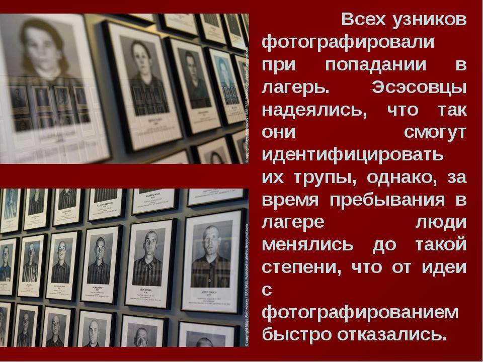 Всех узников фотографировали при попадании в лагерь. Эсэсовцы надеялись, что...