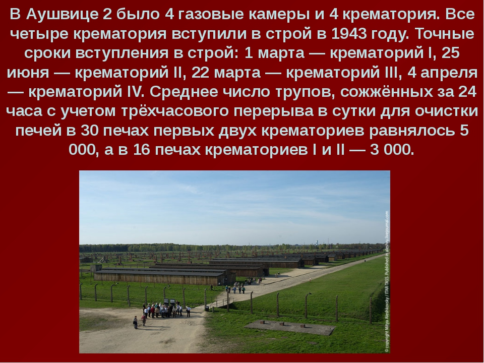 В Аушвице 2 было 4 газовые камеры и 4 крематория. Все четыре крематория вступ...
