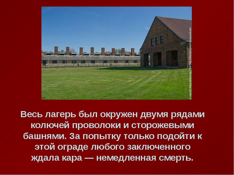 Весь лагерь был окружен двумя рядами колючей проволоки и сторожевыми башнями...