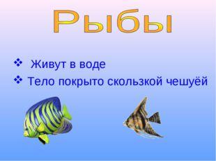 Живут в воде Тело покрыто скользкой чешуёй