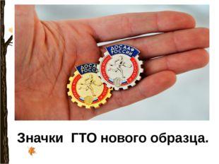 Значки ГТО нового образца.