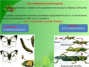 Постэмбриональный период Развитие организма с момента его рождения или выход