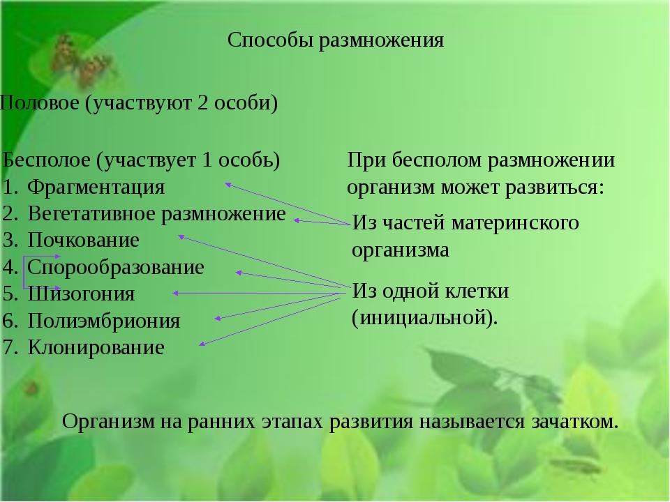 Способы размножения Половое (участвуют 2 особи) Бесполое (участвует 1 особь)...