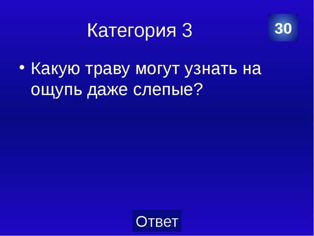 Категория 3 Гепард. 40 Категория Ваш ответ