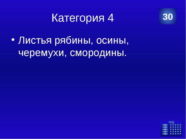 Категория 5 На животе. 40 Категория Ваш ответ
