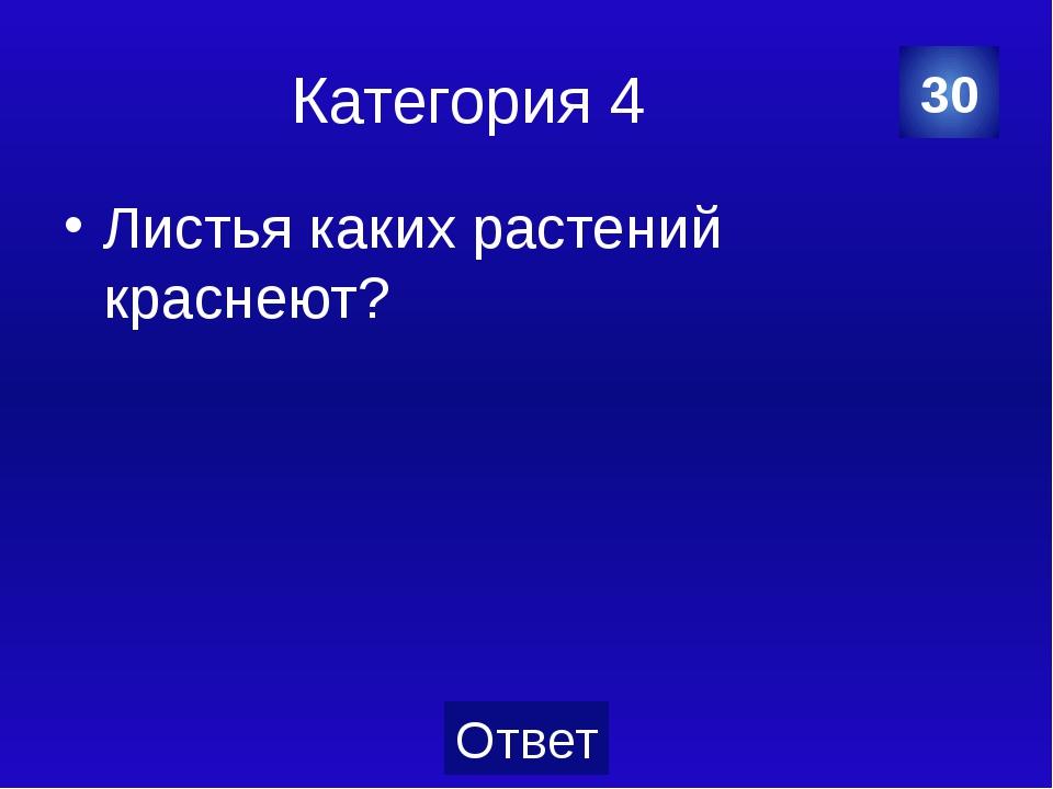 Категория 5 Блохи. 30 Категория Ваш ответ