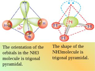 The orientation of the orbitals in the NH3 molecule is trigonal pyramidal. Th