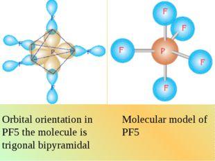 Orbital orientation in PF5 the molecule is trigonal bipyramidal Molecular mod
