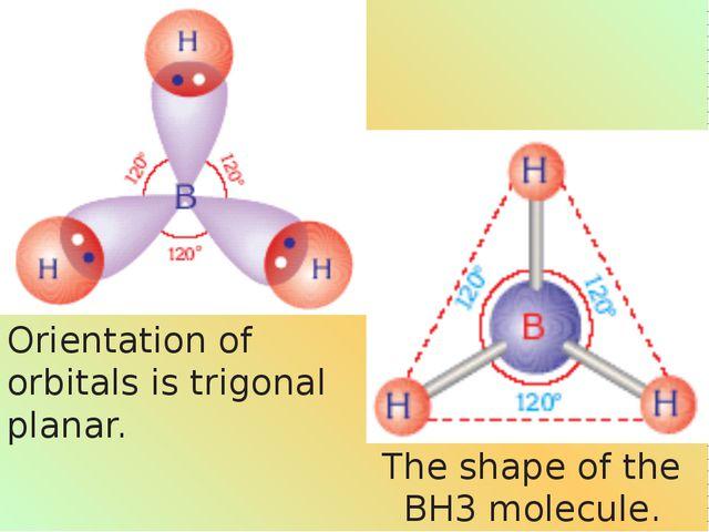 The shape of the BH3 molecule. Orientation of orbitals is trigonal planar.