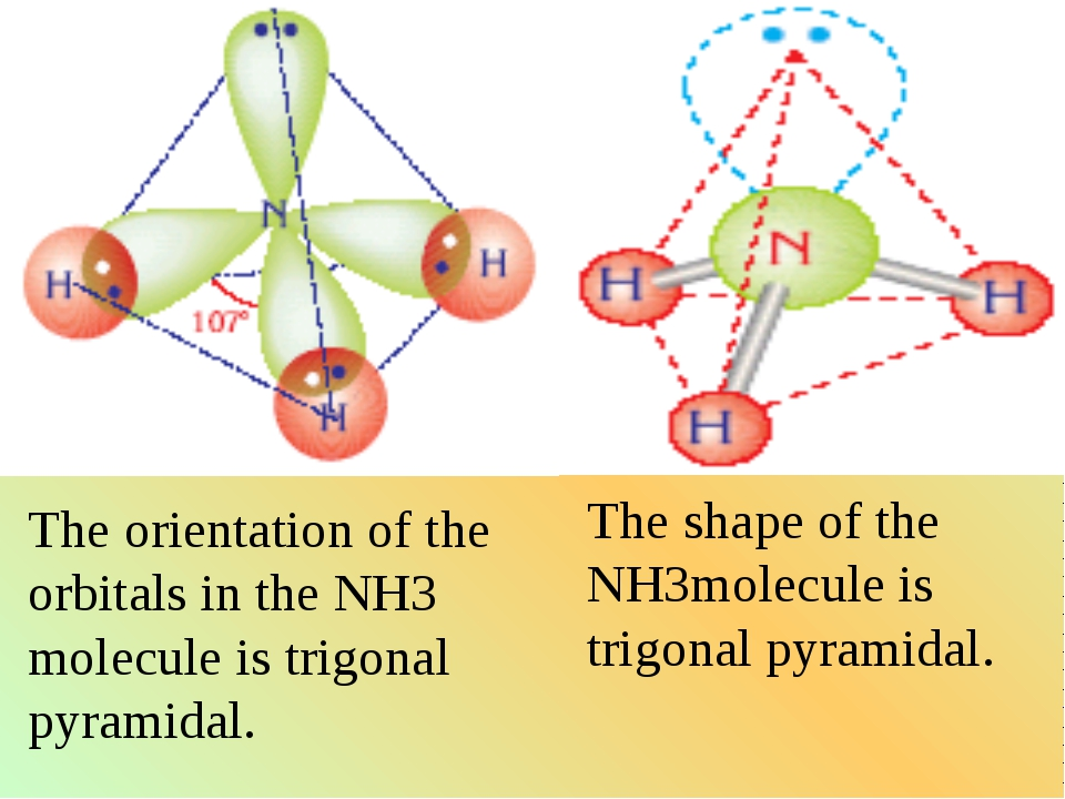 The orientation of the orbitals in the NH3 molecule is trigonal pyramidal. Th...