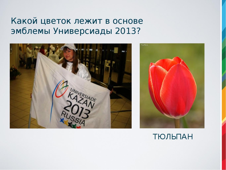 Какой цветок лежит в основе эмблемы Универсиады 2013? ТЮЛЬПАН