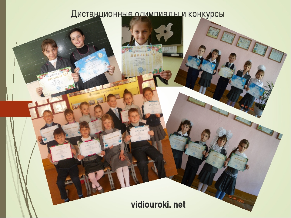 Дистанционные олимпиады и конкурсы vidiouroki. net
