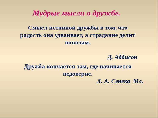 Мудрые мысли о дружбе. Смысл истинной дружбы в том, что радость она удваивает...