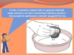 Чтобы отличить известняк от других камней, надо капнуть на него несколько кап