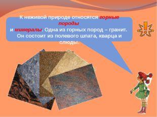 К неживой природе относятся горные породы и минералы. Одна из горных пород –