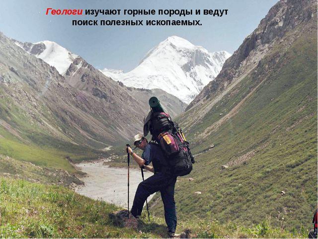 Геологи изучают горные породы и ведут поиск полезных ископаемых.
