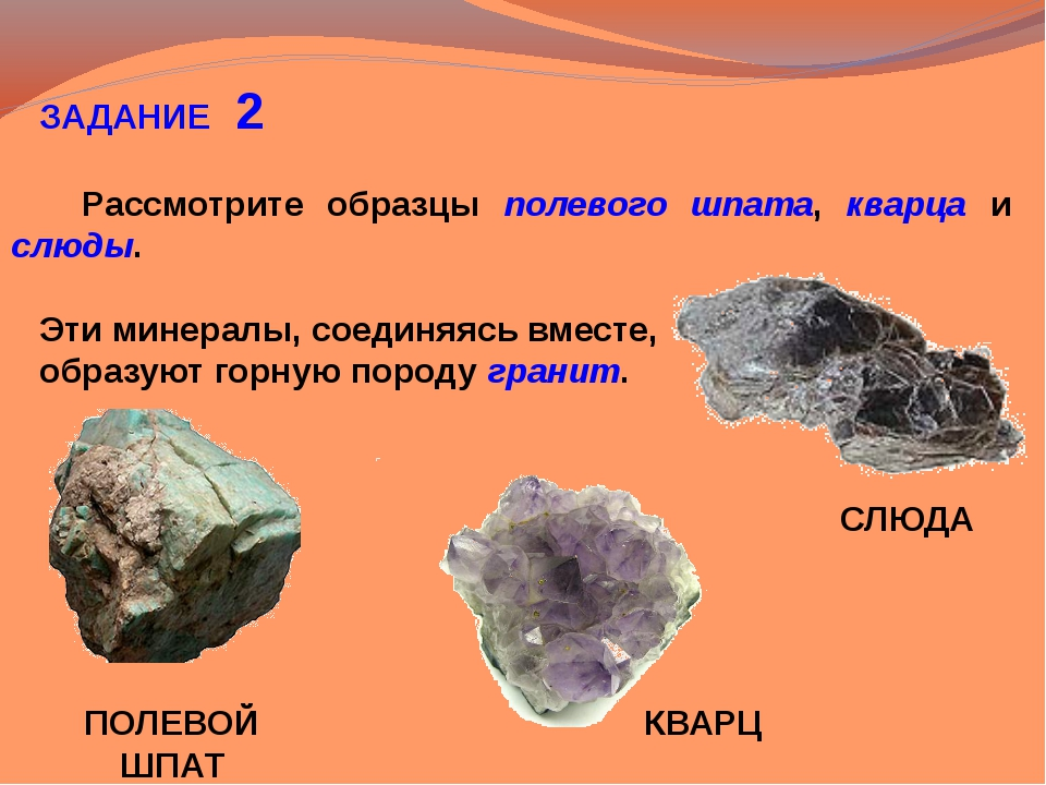 ЗАДАНИЕ 2 Рассмотрите образцы полевого шпата, кварца и слюды. Эти минералы,...