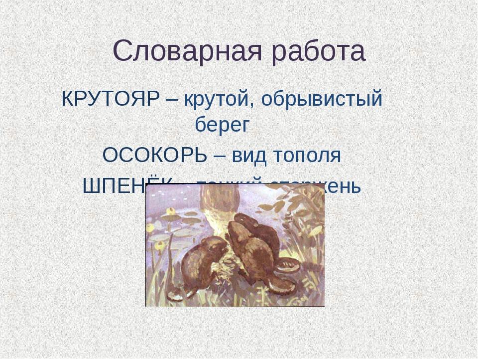 Словарная работа КРУТОЯР – крутой, обрывистый берег ОСОКОРЬ – вид тополя ШПЕН...