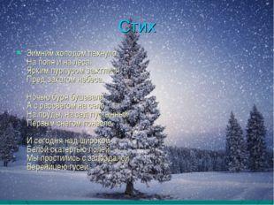Стих Зимним холодом пахнуло На поля и на леса. Ярким пурпуром зажглися Пред з